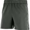 "Salomon Agile 5"" Shorts Men urban chic"